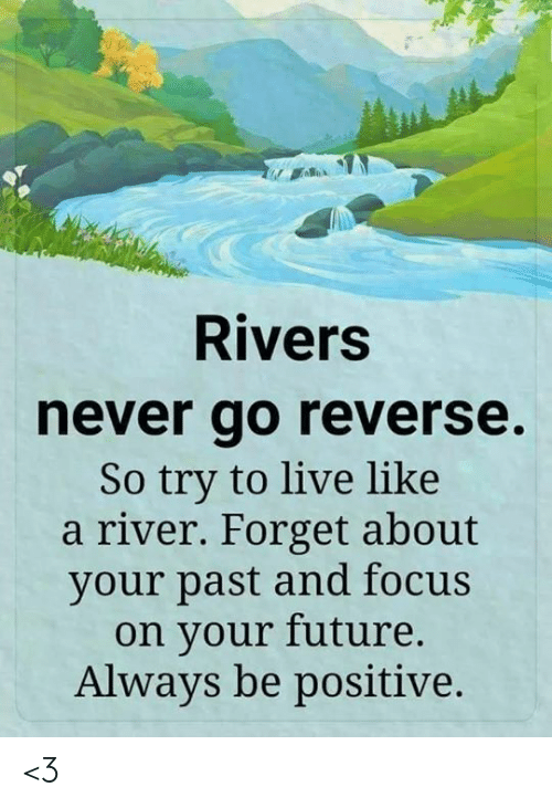 Future, Memes, and Focus: Rivers  never go reverse.  So try to live like  a river. Forget about  your past and focus  on your future.  Always be positive. <3