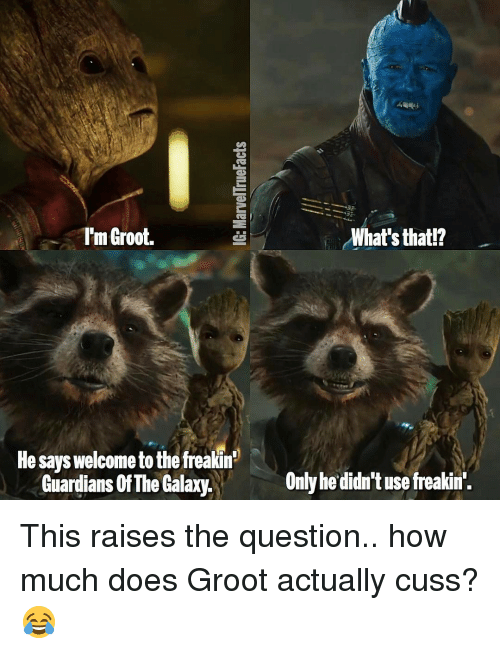 Memes, Guardians of the Galaxy, and 🤖: rm Groot.  He says welcometo the freakin  Guardians Of The Galaxy.  What's that!?  Only he didn't use freakin'. This raises the question.. how much does Groot actually cuss? 😂