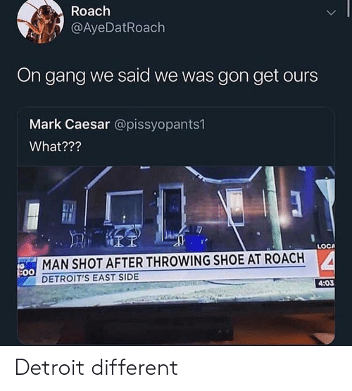 Blackpeopletwitter, Detroit, and Funny: Roach  @AyeDatRoach  On gang we said we was gon get ours  Mark Caesar @pissyopants1  What???  LOCA  MAN SHOT AFTER THROWING SHOE AT ROACH  DETROIT'S EAST SIDE  4:03 Detroit different