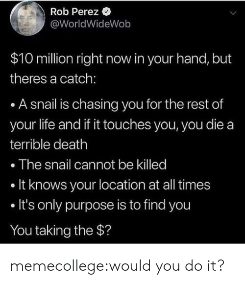 Life, Tumblr, and Blog: Rob Perez *  @WorldWideWob  $10 million right now in your hand, but  theres a catch:  A snail is chasing you for the rest of  your life and if it touches you, you die a  terrible death  . The snail cannot be killed  . It knows your location at all times  . It's only purpose is to find you  You taking the $? memecollege:would you do it?