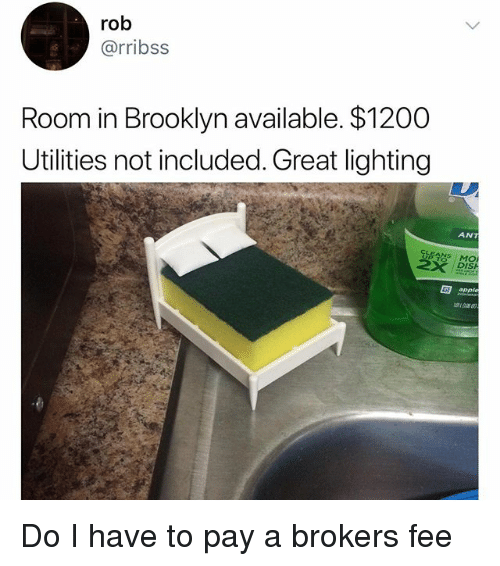Apple, Memes, and Brooklyn: rob  @rribss  Room in Brooklyn available. $1200  Utilities not included. Great lighting  ANT  DISH  apple Do I have to pay a brokers fee