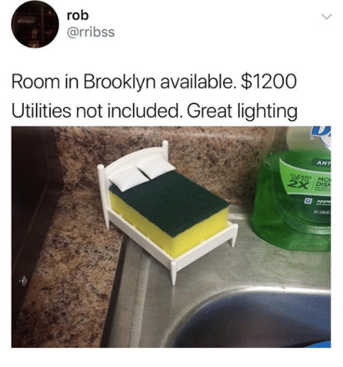 Apple, Brooklyn, and Ant: rob  @rribss  Room in Brooklyn available. $1200  Utilities not included. Great lighting  ANT  DIS  apple
