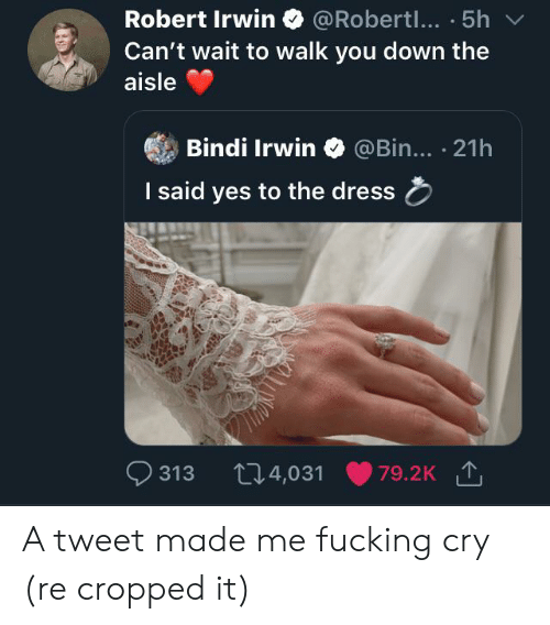 Fucking, The Dress, and Dress: Robert Irwin  @Robertl... 51  h  Can't wait to walk you down the  aisle  Bindi Irwin  @Bin... 21h  I said yes to the dress  313  79.2K T  14,031 A tweet made me fucking cry (re cropped it)
