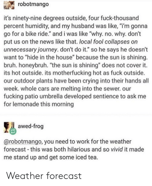 """Bruh, Cars, and Crying: robotmango  it's ninety-nine degrees outside, four fuck-thousand  percent humidity, and my husband was like, """"i'm gonna  go for a bike ride."""" and i was like """"why. no. why. don't  put us on the news like that. local fool collapses on  unnecessary journey. don't do it."""" so he says he doesn't  want to """"hide in the house"""" because the sun is shining.  bruh. honeybruh. """"the sun is shining"""" does not cover it.  its hot outside. its motherfucking hot as fuck outside.  our outdoor plants have been crying into their hands all  week. whole cars are melting into the sewer. our  fucking patio umbrella developed sentience to ask me  for lemonade this morning  awed-frog  @robotmango, you need to work for the weather  forecast this was both hilarious and so vivid it made  me stand up and get some iced tea Weather forecast"""