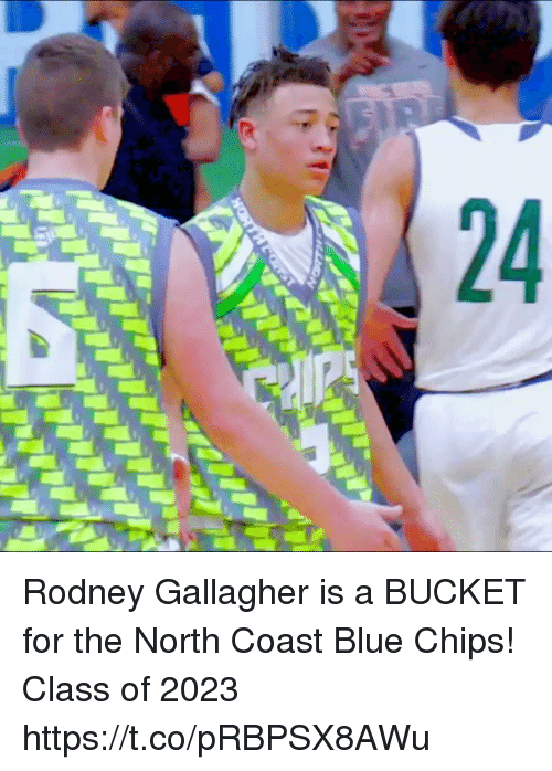new product dca62 39c61 Rodney Gallagher Is a BUCKET for the North Coast Blue Chips ...