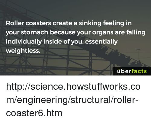 Roller Coasters Create A Sinking Feeling In Your Stomach Because - Create coasters from photos