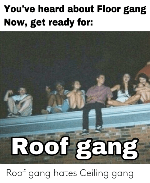 Gang,  Hates, and Roof: Roof gang hates Ceiling gang