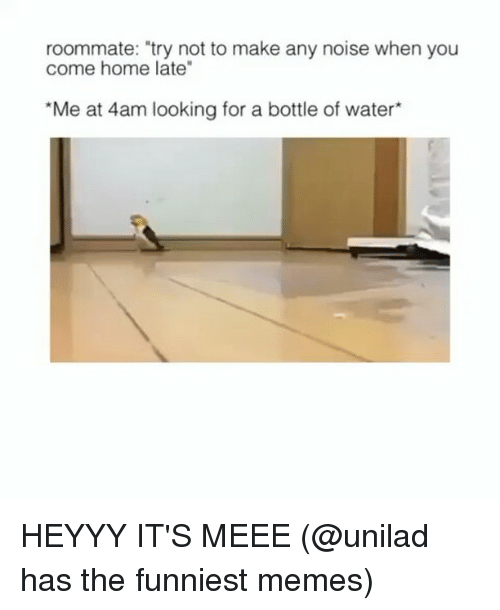 "Funny, Memes, and Roommate: roommate: try not to make any noise when you  come home late  ""Me at 4am looking for a bottle of water*"" HEYYY IT'S MEEE (@unilad has the funniest memes)"
