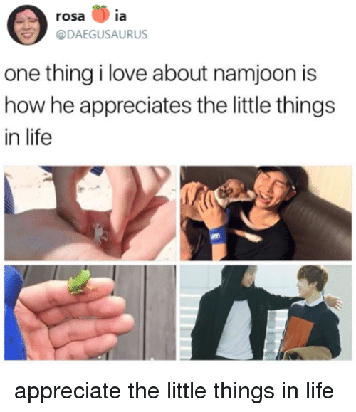 Life, Love, and Appreciate: rosa ia  @DAEGUSAURUS  one thing i love about namjoon is  how he appreciates the little things  in life appreciate the little things in life