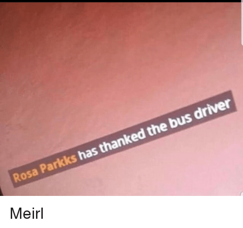MeIRL, Driver, and Bus: Rosa Parkks has thanked the bus driver Meirl
