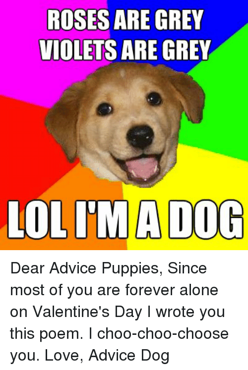 roses are grey violets are grey olimladog dear advice puppies 1398943 ✅ 25 best memes about being alone being alone memes
