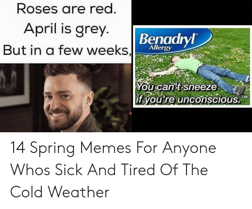 "Benadryl, Memes, and Grey: Roses are red  April is grey  Benadryl  But in a few weeks,l  Allergy  Youcaritisneeze . ""  if youre unconscious,T  OLRATM 14 Spring Memes For Anyone Whos Sick And Tired Of The Cold Weather"