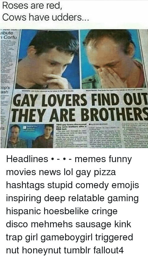Ash, Emoji, and Memes: ROSeS are red  Cows have udders.  ributo  Corfu  ops  ash  GAY LOVERS FIND OUT  THEY ARE BROTHERS Headlines • - • - memes funny movies news lol gay pizza hashtags stupid comedy emojis inspiring deep relatable gaming hispanic hoesbelike cringe disco mehmehs sausage kink trap girl gameboygirl triggered nut honeynut tumblr fallout4