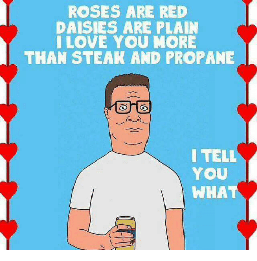 Memes, 🤖, and Red: ROSES ARE RED  DAISIES ARE PLAIN  I LOVE YOU MORE  THAN STEAK AND PROPANE  I TELL  YOU  WHA