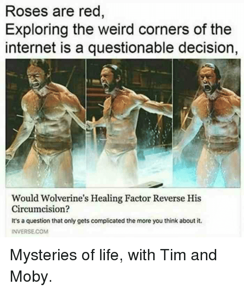 Internet, Life, and Reddit: Roses are red  Exploring the weird corners of the  internet is a questionable decision,  Would Wolverine's Healing Factor Reverse His  Circumcision?  It's a question that only gets complicated the more you think about it.  INVERSE.CoM
