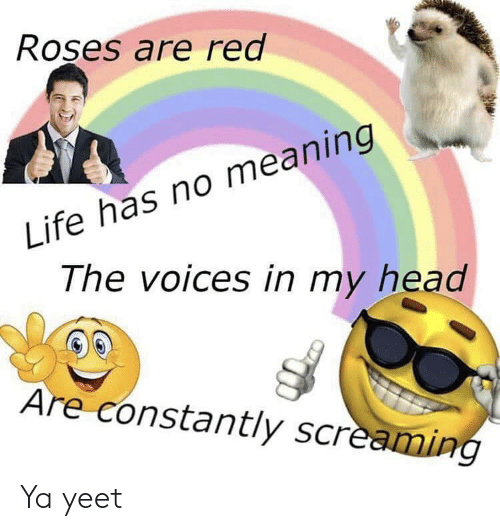 Head, Life, and Meaning: Roses are red  Life has no meaning  The voices in my head  Are constantly screaming Ya yeet