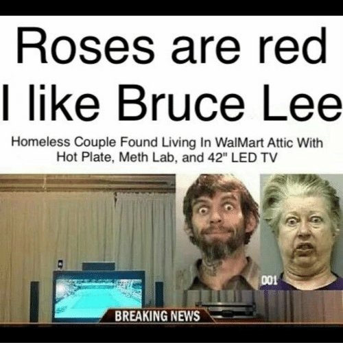 Roses Are Red Like Bruce Lee Homeless Couple Found Living