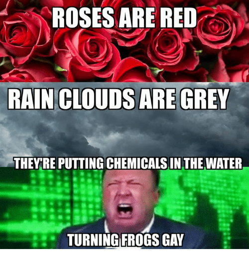 roses are gay