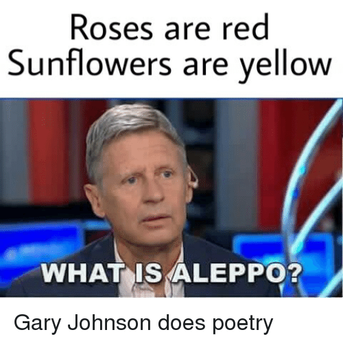 Roses Are Red Sunflowers Are Yellow WHAT IS ALEPPO? Gary Johnson Does Poetry | gary johnson meme