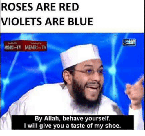 Blue, Red, and Roses: ROSES  ARE RED  VIOLETS ARE BLUE  By Allah, behave yourself.  I will give you a taste of my shoe.