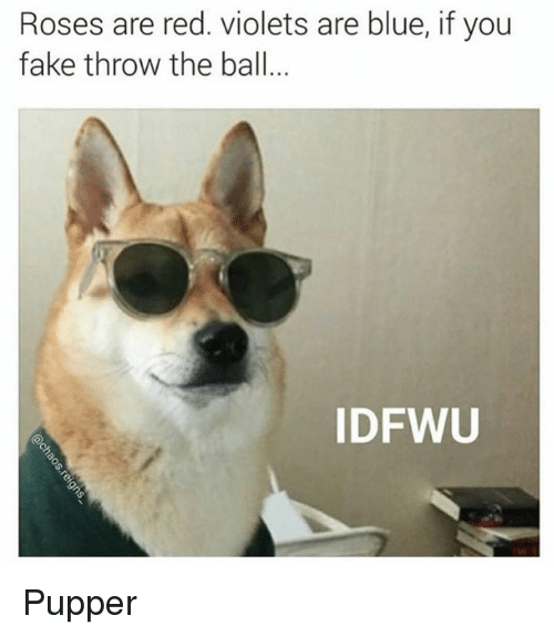 Memes, 🤖, and Violet: Roses are red. violets are blue, if you  fake throw the ball  ID FWU Pupper