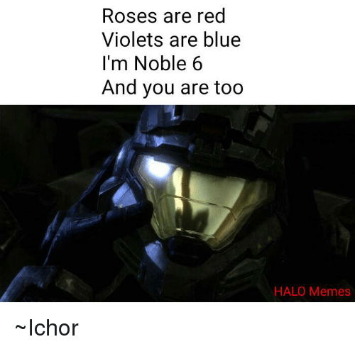 Halo, Rose, and Roses: Roses are red  Violets are blue  I'm Noble 6  And you are too  HALO Memes ~Ichor