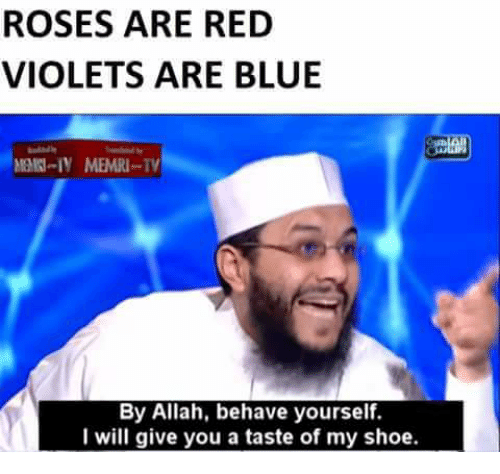 Shoes, Blue, and Reds: ROSES ARE RED  VIOLETS ARE BLUE  MEMRI--TV  By Allah, behave yourself.  I will give you a taste of my shoe.