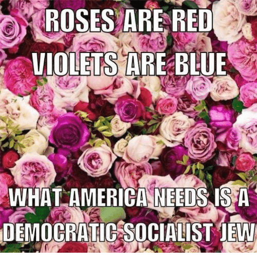 Memes, 🤖, and Violet: ROSES ARE RED  VIOLETS ARE BLUE P  WHAT AMERICA NEEDS IS A  DEMOCRATIC SOCIALIST jEW