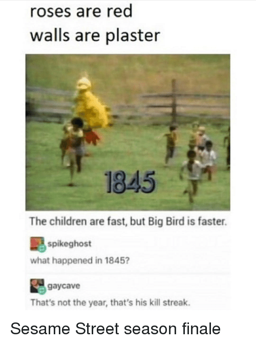 Children, Sesame Street, and Big Bird: roses are red  walls are plaster  1845  The children are fast, but Big Bird is faster.  spikeghost  what happened in 1845?  gaycave  That's not the year, that's his kill streak.