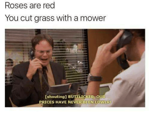 Never, Been, and Red: Roses are red  You cut grass with a mower  [shouting] BUTTLİCKE , O  ICES HAVE NEVER BEEN LOWERI
