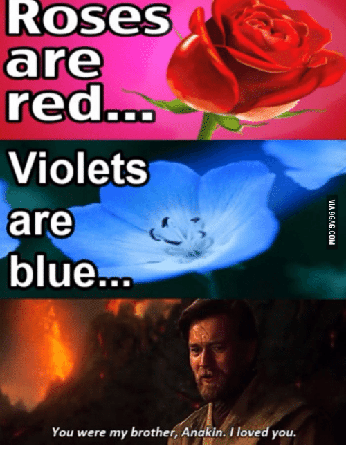 Roses Red Are Blue You Were My Brother Anakin I Loved You Rose Red