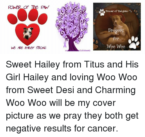 Rower Of Twee Paw We Are Hyvey Strong 13g Power Of The Paw Prayers