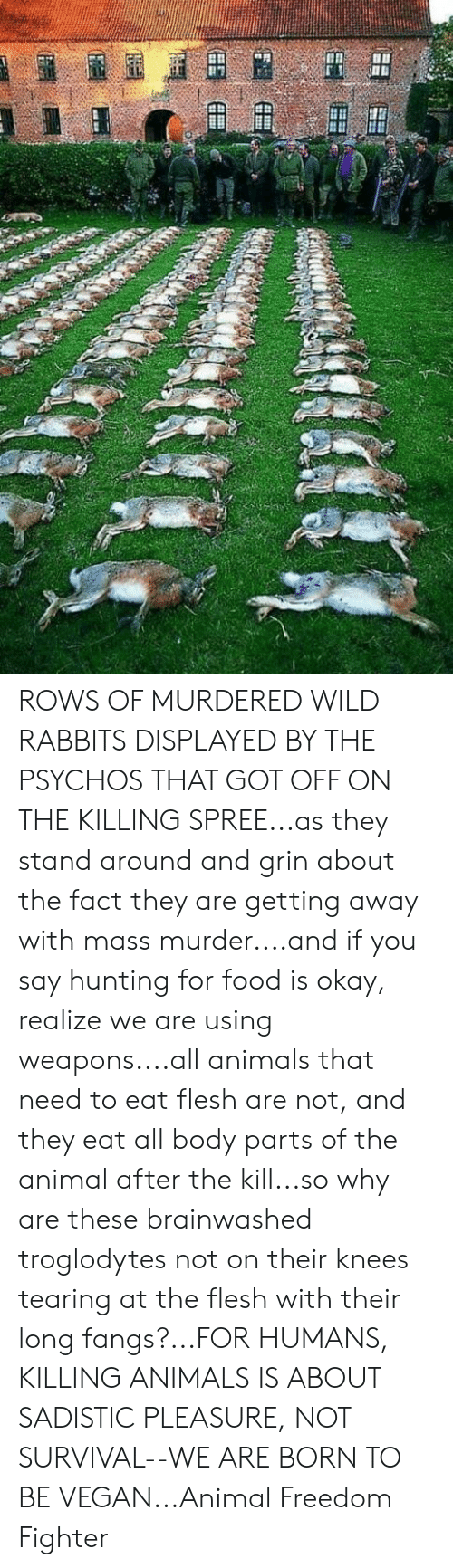 Animals, Food, and Memes: ROWS OF MURDERED WILD RABBITS DISPLAYED BY THE PSYCHOS THAT GOT OFF ON THE KILLING SPREE...as they stand around and grin about the fact they are getting away with mass murder....and if you say hunting for food is okay, realize we are using weapons....all animals that need to eat flesh are not, and they eat all body parts of the animal after the kill...so why are these brainwashed troglodytes not on their knees tearing at the flesh with their long fangs?...FOR HUMANS, KILLING ANIMALS IS ABOUT SADISTIC PLEASURE, NOT SURVIVAL--WE ARE BORN TO BE VEGAN...Animal Freedom Fighter