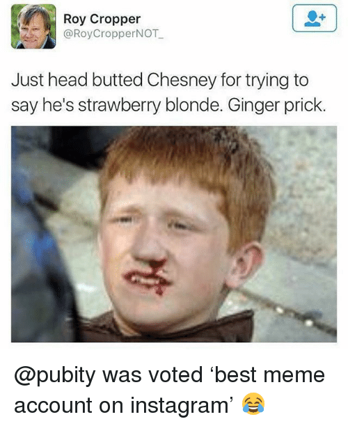 Head, Instagram, and Meme: Roy Cropper  @RoyCropperNOT  Just head butted Chesney for trying to  say he's strawberry blonde. Ginger prick. @pubity was voted 'best meme account on instagram' 😂