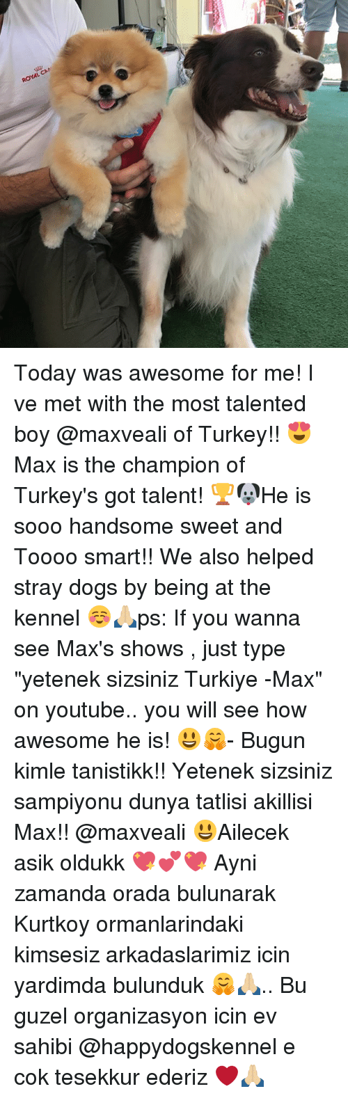 "Dogs, Memes, and youtube.com: ROYAL CA Today was awesome for me! I ve met with the most talented boy @maxveali of Turkey!! 😍Max is the champion of Turkey's got talent! 🏆🐶He is sooo handsome sweet and Toooo smart!! We also helped stray dogs by being at the kennel ☺️🙏🏼ps: If you wanna see Max's shows , just type ""yetenek sizsiniz Turkiye -Max"" on youtube.. you will see how awesome he is! 😃🤗- Bugun kimle tanistikk!! Yetenek sizsiniz sampiyonu dunya tatlisi akillisi Max!! @maxveali 😃Ailecek asik oldukk 💖💕💖 Ayni zamanda orada bulunarak Kurtkoy ormanlarindaki kimsesiz arkadaslarimiz icin yardimda bulunduk 🤗🙏🏼.. Bu guzel organizasyon icin ev sahibi @happydogskennel e cok tesekkur ederiz ❤️🙏🏼"