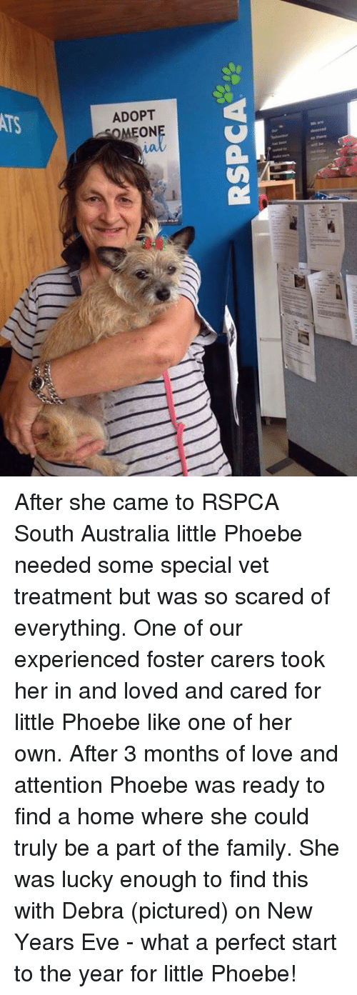 RSPCA ADOPT OMEON a So There ー! After She Came to RSPCA South