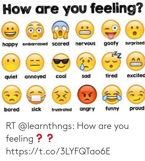 Memes, 🤖, and How: RT @learnthngs: How are you feeling❓❓ https://t.co/3LYFQTao6E