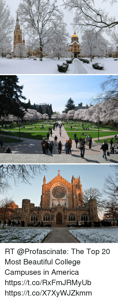 America, Beautiful, and College: RT @Profascinate: The Top 20 Most Beautiful College Campuses in America https://t.co/RxFmJRMyUb https://t.co/X7XyWJZkmm