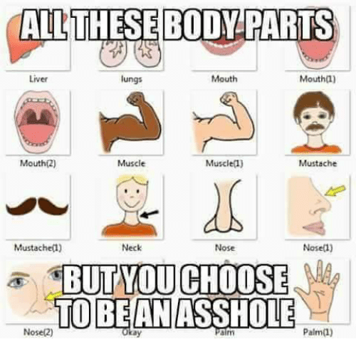 Liver, Aim, and Palm: RTS  Liver  lungs  Mouth  Mouth(l)  Mouth(2)  Muscle  Muscle(1)  Mustache  Mustachel)  Neck  Nose  Nosel)  TOBEANASSHOLE  Nose(2)  aim  Palm(1)  ay