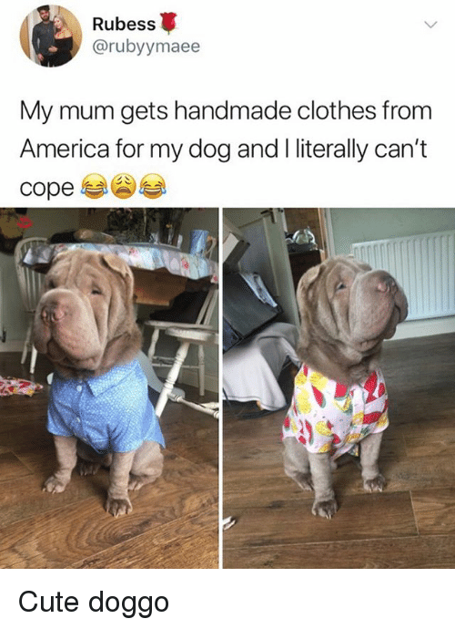 America, Clothes, and Cute: Rubess  @rubyymaee  My mum gets handmade clothes from  America for my dog and l literally can't  cope Cute doggo
