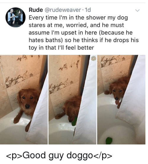 Rude, Shower, and Good: Rude @rudeweaver 1d  Every time l'm in the shower my dog  stares at me, worried, and he must  assume l'm upset in here (because he  hates baths) so he thinks if he drops his  toy in that I'll feel better  서 <p>Good guy doggo</p>