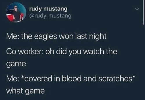 Philadelphia Eagles, The Game, and Game: rudy mustang  @rudy_mustang  Me: the eagles won last night  Co worker: oh did you watch the  game  Me: *covered in blood and scratches*  what game