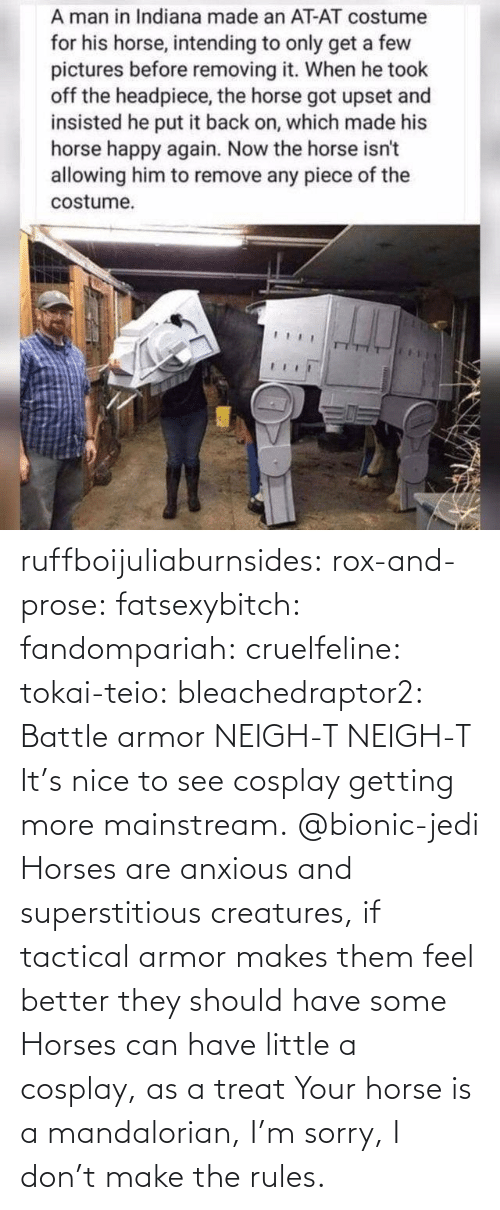 Horses, Jedi, and Sorry: ruffboijuliaburnsides:  rox-and-prose:  fatsexybitch:   fandompariah:  cruelfeline:  tokai-teio:  bleachedraptor2: Battle armor    NEIGH-T  NEIGH-T    It's nice to see cosplay getting more mainstream.    @bionic-jedi     Horses are anxious and superstitious creatures, if tactical armor makes them feel better they should have some    Horses can have little a cosplay, as a treat  Your horse is a mandalorian, I'm sorry, I don't make the rules.