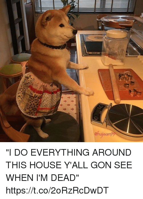 "House, Girl Memes, and Gon: @rujisan? ""I DO EVERYTHING AROUND THIS HOUSE Y'ALL GON SEE WHEN I'M DEAD"" https://t.co/2oRzRcDwDT"