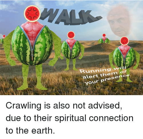 Earth, Running, and Them: Running wilt  ert them of  our presence Crawling is also not advised, due to their spiritual connection to the earth.