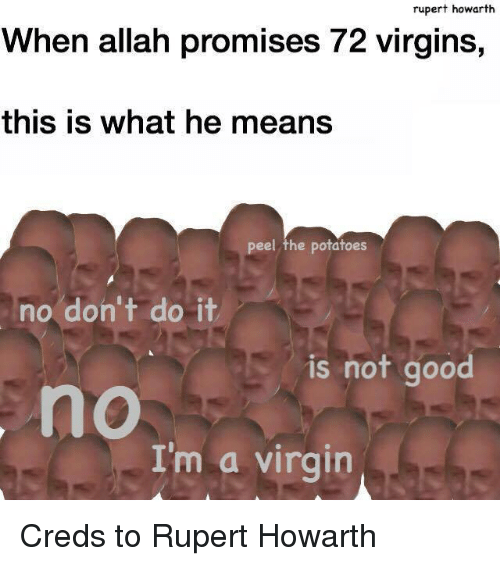 Virgin, Good, and Mean: rupert howarth  When allah promises 72 virgins,  this is what he means  peel the potatoes  no don't do it  is not good  no  I'm a virgin Creds to Rupert Howarth