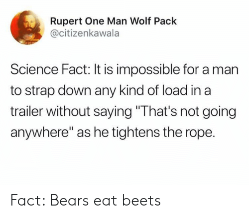 """Bears, Science, and Wolf: Rupert One Man Wolf Pack  @citizenkawala  Science Fact: It is impossible for a man  to strap down any kind of load in a  trailer without saying """"That's not going  anywhere"""" as he tightens the rope. Fact: Bears eat beets"""