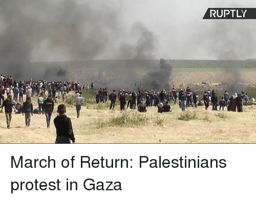 Dank, Protest, and 🤖: RUPTLY March of Return: Palestinians protest in Gaza