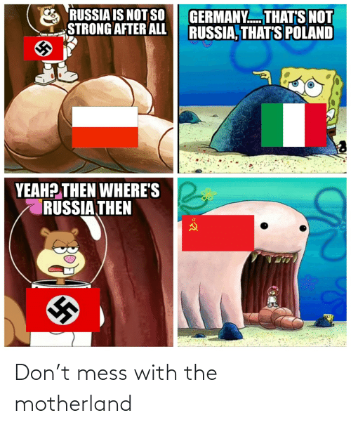Yeah, Germany, and Russia: RUSSIA IS NOT SO  STRONG AFTER ALL  GERMANY. THAT'S NOT  RUSSIA, THAT'S POLAND  YEAH? THEN WHERE'S  RUSSIA THEN Don't mess with the motherland
