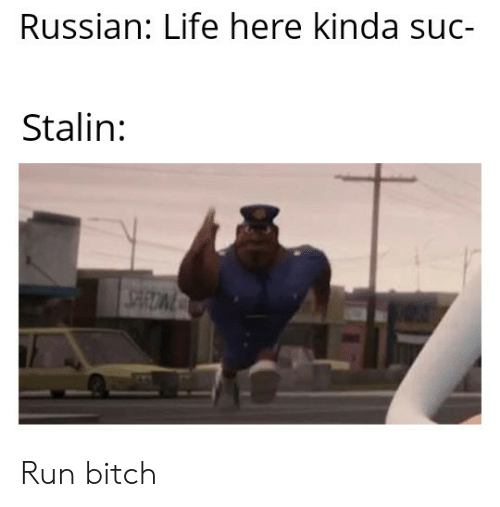 Bitch, Life, and Run: Russian: Life here kinda suc-  Stalin: Run bitch